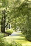 Härlig sikt på landsplatsen Elswout, nära Overveen och Bloemendaal i Nederländerna Elswout är en historisk och scenisk estat Arkivbilder