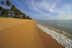Härlig sikt på stranden med vågor och kokospalmer Arkivfoto