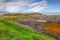 Härlig sikt till tundralandskapet och hav i Norge royaltyfri foto