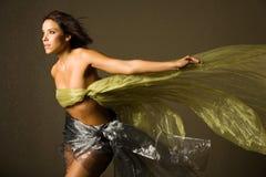 härlig silk kvinna arkivbild