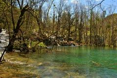 Härlig sjö av Plitvice Arkivbild