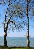 Härlig sjö Balaton Arkivbilder