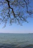 Härlig sjö Balaton Arkivfoto