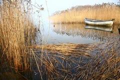 Härlig sjö i Danmark Arkivbild