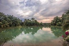 Härlig sjö i solnedgångtid nära mörker Royaltyfri Bild