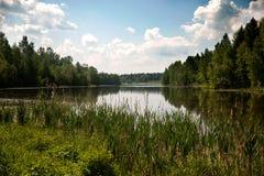 Härlig sjö i sommaren Royaltyfri Fotografi