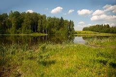 Härlig sjö i sommaren Royaltyfria Foton