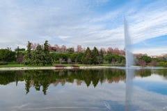 Härlig sjö med strålen av omgivet av träd royaltyfri fotografi