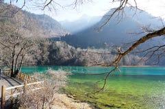 Härlig sjö med underbar plats av det närliggande berget stock illustrationer
