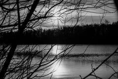 Härlig sjö och skog under solnedgång i monokrom arkivbild