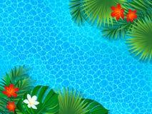 Härlig sjösidasiktsaffisch tropisk bakgrund Vändkretslandskapet med den exotiska djungelrainforesten gömma i handflatan sidor, mo vektor illustrationer