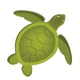 Härlig sköldpadda Arkivfoto