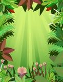 härlig skog för bakgrund Royaltyfri Fotografi