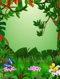 härlig skog för bakgrund Royaltyfri Foto