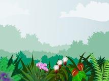 härlig skog för bakgrund Arkivfoto