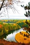 Härlig skog i höst Royaltyfri Foto