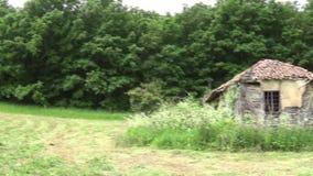 Härlig skog och gammal övergiven koja i ängen arkivfilmer
