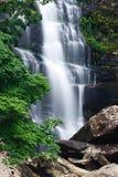 härlig skogregnvattenfall Arkivbilder