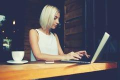 Härlig smart kvinnlig student som använder bärbar datordatoren för att förbereda sig för courseworken arkivfoto