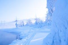 Härlig snöig vinter i Ryssland Arkivbilder