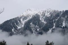 härlig snow för destinationsliggandeskidåkning Royaltyfri Fotografi