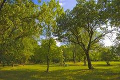Härlig solig dag i parken royaltyfri foto