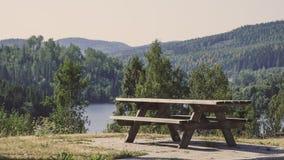Härlig solig dag i skogberglandskap arkivfoto