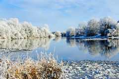 Härlig solig dag i vintern på floden Royaltyfria Bilder