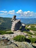 Härlig solig sommardag i bergen royaltyfria foton