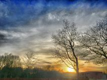 Härlig solnedgång över en skog royaltyfria foton