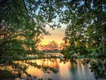 Härlig solnedgång över en skogsjö royaltyfria bilder