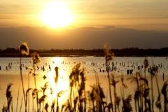 Härlig solnedgång över sjön med himlen Royaltyfri Bild
