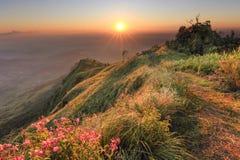 härlig solnedgång royaltyfria bilder
