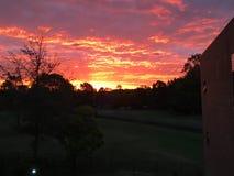 härlig solnedgång arkivbild