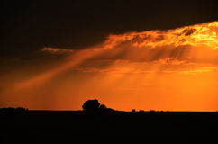 härlig solnedgång för bakgrund Arkivfoton