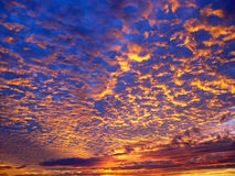härlig solnedgång för bakgrund Fotografering för Bildbyråer