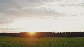 Härlig solnedgång i natur Vänner står omfamna sig och kysser i ett fält Skog på bakgrunden Långsam mo stock video