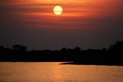 Härlig solnedgång i nordliga Pantanal Fotografering för Bildbyråer