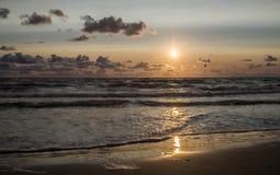 Härlig solnedgång med seagulls över Östersjön royaltyfri fotografi