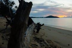 Härlig solnedgång mellan journalen Arkivfoto