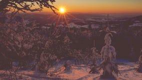 Härlig solnedgång- och snögran i vintern Carpathians arkivfilmer