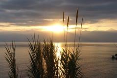 Härlig solnedgång ovanför den lugna medelhavet Royaltyfria Bilder