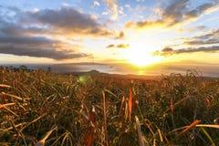 Härlig solnedgång på den södra kust- vägen, Maui, Hawaii royaltyfri bild