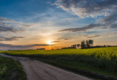 Härlig solnedgång på en landsväg med blå himmel och moln Arkivbilder