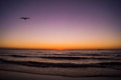 Härlig solnedgång på en strand Royaltyfri Bild