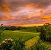 Härlig solnedgång på ett fält Royaltyfri Fotografi