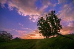 Härlig solnedgång på kanten av en by nära en skog i Valce Royaltyfri Bild