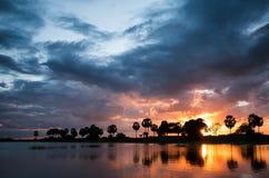 Härlig solnedgång på mannar, Sri Lanka Royaltyfri Bild