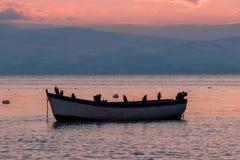 Härlig solnedgång på Ohrid, Makedonien royaltyfria foton