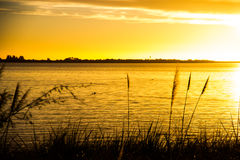 Härlig solnedgång, simma för änder Fotografering för Bildbyråer